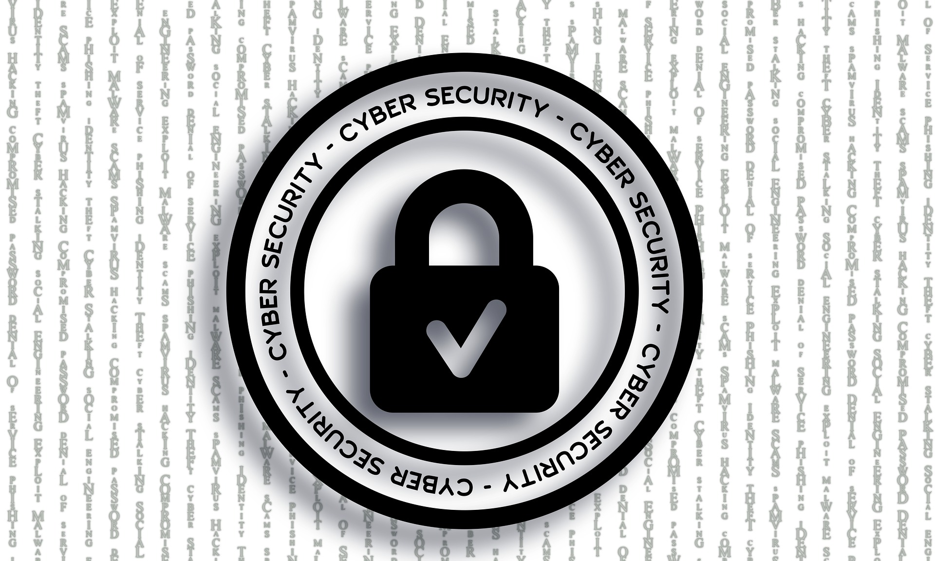 WhiteBearSolutions aportará su visión y experiencia en seguridad en NextSecure